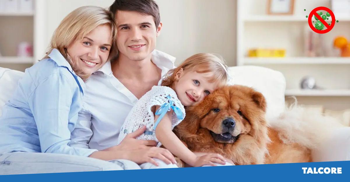 TALCORE-SOLUTIONS-Sanitizacion-Residencial-02